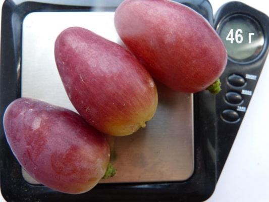 Размер ягод