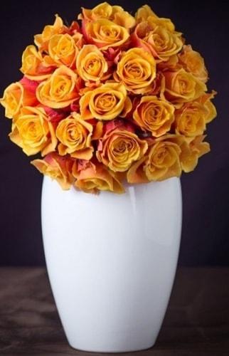 букет из роз Черри Бренди