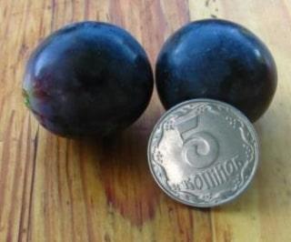 Ягода винограда