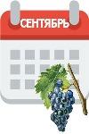 работі на винограднике в сентябре: удобрение и обработка от болезней, обрезка
