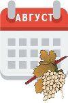 Календарь работ на винограднике в августе